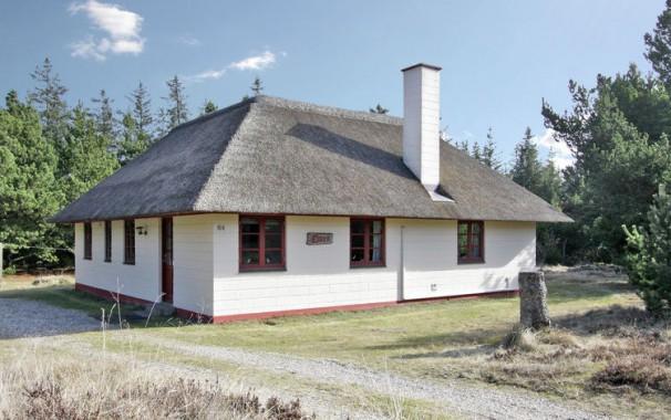 Ferienhaus in Dänemark (bei Blåvand)