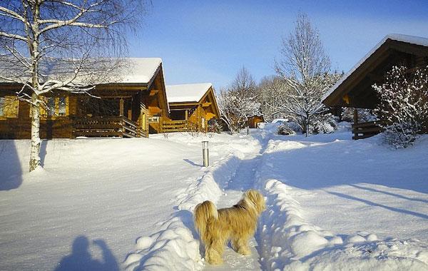 Ferienanlage mit Blockhütten in Stamsried